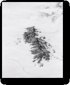 Coyote Knolls - Winter, Tule Valley, Utah, 2014