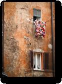 FACADE,<br />BOLOGNA, ITALY<br />2005